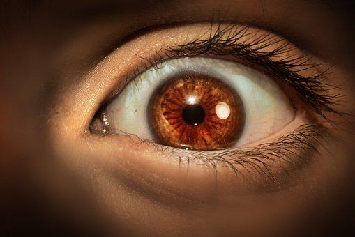 Eye, Eyelashes, Eyeball, Eyebrow, Vision, Iris, Model