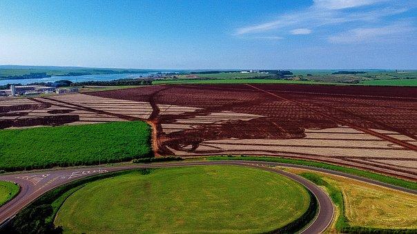 Fields, Farm, Rural, Plantation, Cultivation