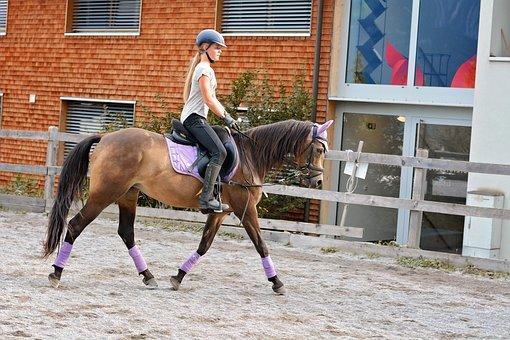 Horse, Girl, Horseback Riding, Riding Lesson, Trot
