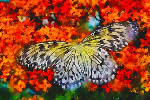 Butterfly, Flowers, Painting, Watercolor, Insect, Wings