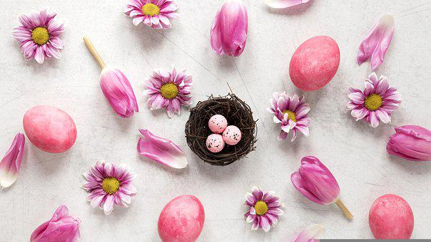 Easter Eggs, Flowers, Flat Lay, Background, Easter