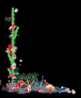 Fish, Coral, Underwater, Seaweed, Border, Frame