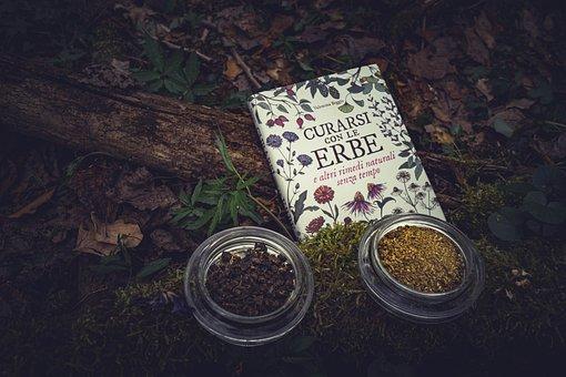 Herb, Tea, Light, Gift, Nature, Health, Tee, Herbs