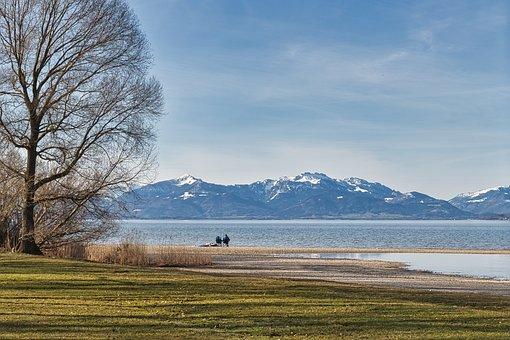 Lake, Bank, Mountains, Meadow, Trees, Bare Trees