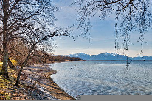 Lake, Bank, Mountains, Trees, Bare Trees, Branches