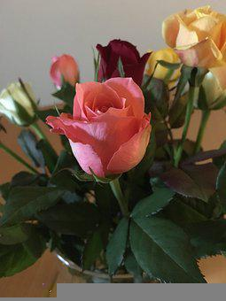 Bouquet Of Roses, Valentine's Day, Birthday
