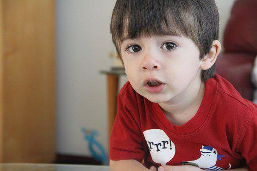 Child, Boy, Cute, Face, Kid, Young, Little, Handsome