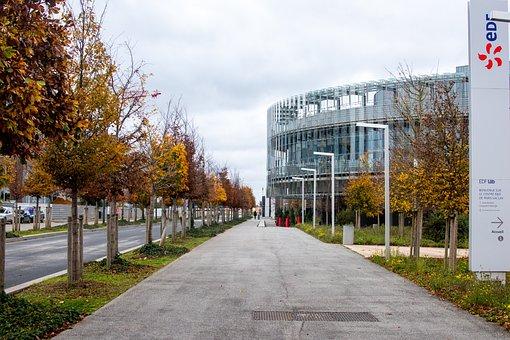 Sidewalk, Trees, City, Pavement, Walkway, Building