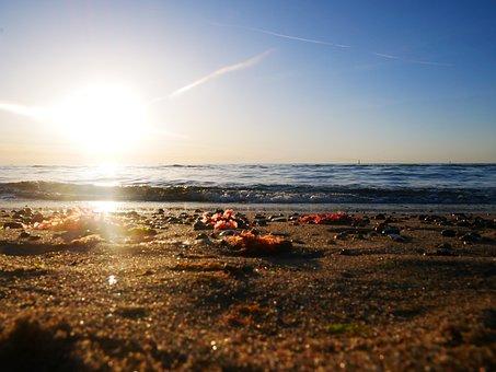 Warnemünde, Beach, Sun, Sunset, Sea, Sand, Light, Sky