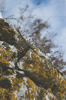 Rock, Nature, View, Clouds, Macro, Stone, Landscape