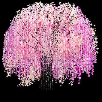 Cherry Blossom, Tree, Watercolor, Sakura, Cherry Tree