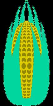 Corn, Maze, Leaves, Plant, Vegetables, Agriculture