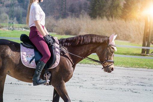 Horseback Riding, Horse, Girl, Saddle, Bridle, Pony