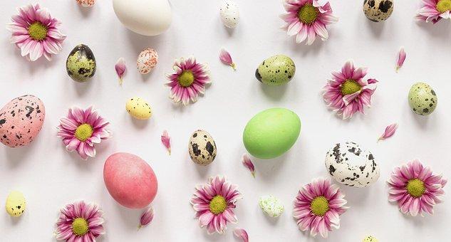 Easter, Eggs, Flat Lay, Flowers, Easter Eggs