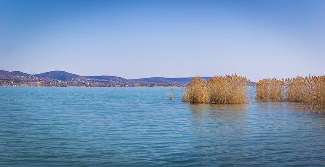 Lake, Grass, Town, Panorama, Water, Reed, Mountains
