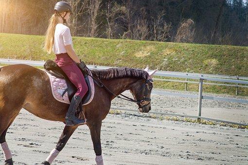 Horseback Riding, Horse, Girl, Pony, Saddle Horse