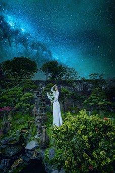 Woman, Ao Dai, Garden, Night, Fashion, Vietnamese