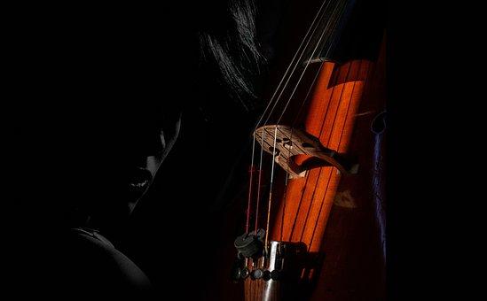 Cello, Strings, Musa, Music, Classic, Musical, Sound