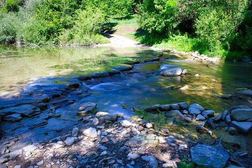 River, Rocks, Forest, Stones, Stream, Water, Torrent