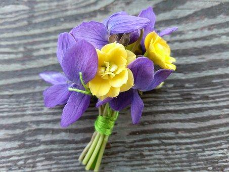 Violets, Flowers, Bouquet, A Small Bunch, Petals, Bloom