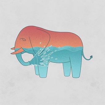 Elephant, Spray, Water, Soul, Ocean, Animal, Wildlife