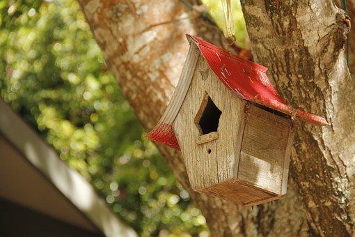 Bird House, Tree, Garden, Nest Box, Wood, Outdoors