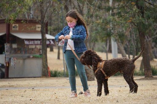 Dog, Pet, Girl, Child, Kid, Animal, Domestic Dog