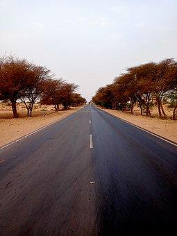 Road, Highway, Desert, Trees, Nature, View, Scene