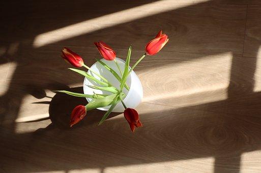 Tulips, Flowers, Petals, Bouquet, Vase, Plant, Flora