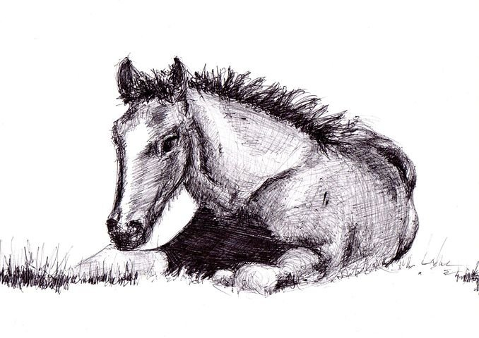 Horse, Drawing, Pen, Art, Artwork