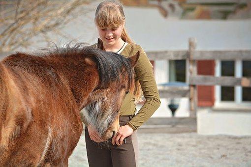 Child, Girl, Horse, Pony, Foal, Learn, Friends, Leisure