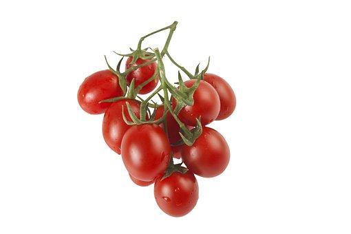 Tomatoes, Red, Fresh, Fresh Tomatoes, Ripe, Harvest