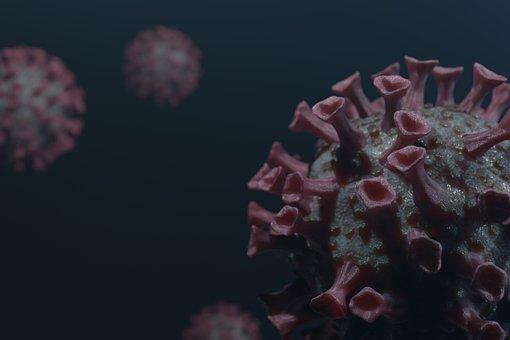 Corona, Virus, Coronavirus, Covid-19, Hygiene