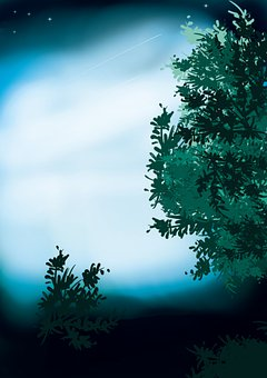 Tree, Leaves, Bush, Foliage, Hedge, Shrub, Green