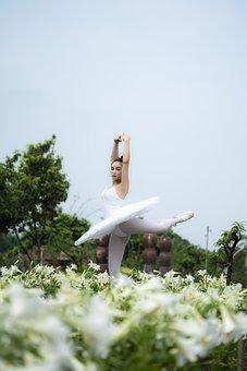 Ballet, Woman, Flowers, Ballerina, Dance, Dancing, Girl