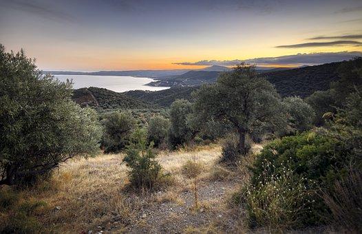 Chalkidiki, Greece, Aegean, Landscape, Seaside, Coast