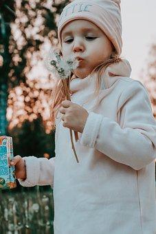Dandelions, Girl, Baby, Spring, Kids, Grass
