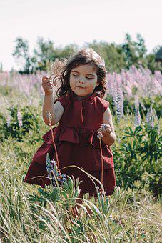 Girl, Field, Nature, Kids, In The Summer Of, Happiness