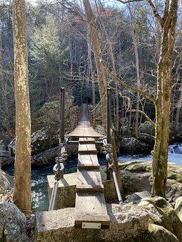 Bridge, Hiking, Waterfall, Outdoors, Nature, Pathway