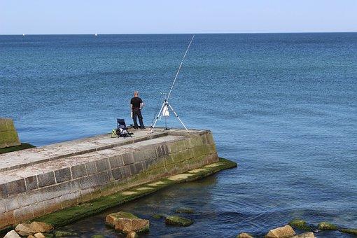 Man, Angler, Sea, Fishing Rod, Fishing, Fisherman