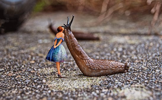 Woman, Slug, Fantasy, Surreal, Fairytale, Kiss, Romance