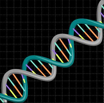 Dna, Genetic, Science, Biology, Medical, Gene, Genetics