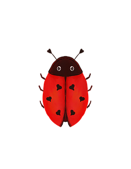 Lovebug, Ladybug, Ladybird, Insect, Beetle