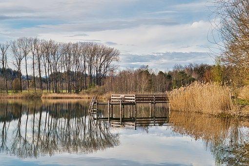 Lake, Jetty, Reflection, Water, Boardwalk, Reed, Grass