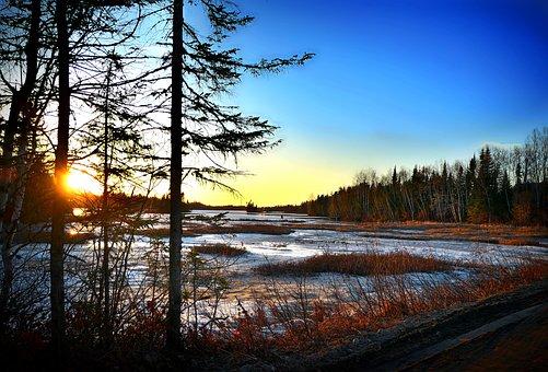Landscape, Nature, Spring, Thaw, Trees, Marsh, Sun
