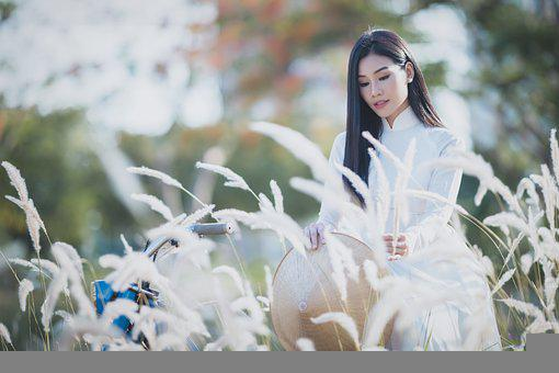 Ao Dai, Asian, Model, Asian Woman, Young Woman, Female