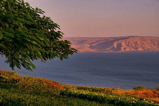 Lake, Meadow, Sea Of Galilee, Bank, Mountain, Water