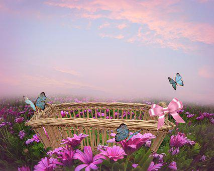 Basket, Flowers, Butterflies, Pink Flowers