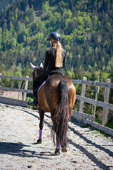 Woman, Horse, Ride, Equestrian, Pony, Nature, Hobby