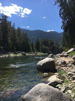 River, Rocky, Trees, Mountains, Conifers, Coniferous